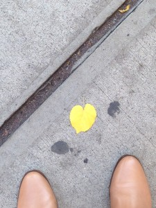 yellow heart leaf