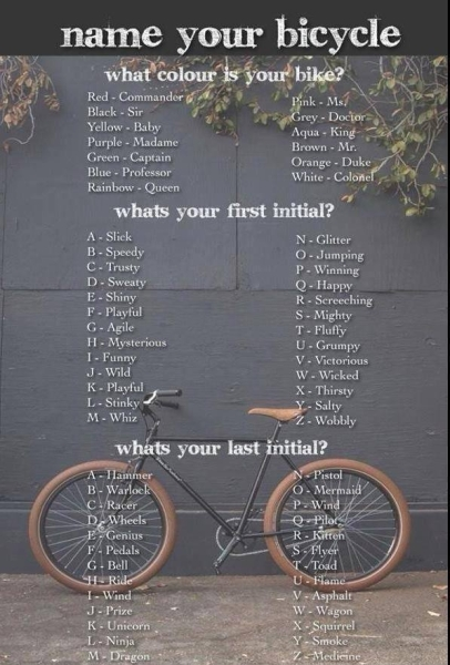 bike name
